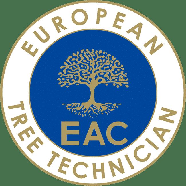 Zertifikat für Baumpflege